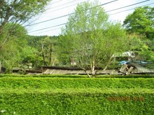 熊本県西原村活断層近くでの倒壊家屋①